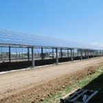 serre fotovoltaiche in Sardegna 3/4